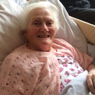 Nellie recovering in hospital