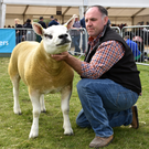 Mark Patterson with his champion Texel