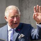 The Prince of Wales attended a garden party at Castle Coole (Liam McBurney/PA)