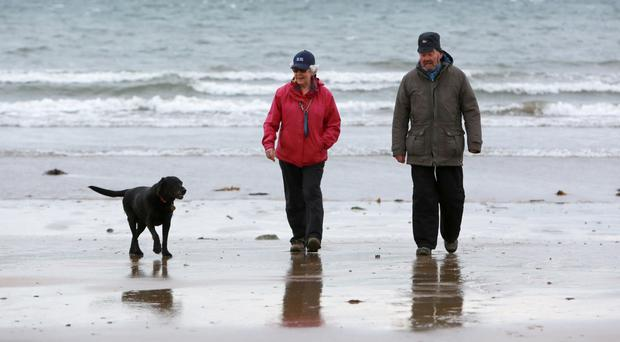 Liz and Chris McFerron walk their dog Bella at Helen's Bay beach yesterday
