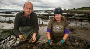 Ciaran Gallagher and Maureen Nolan on their oyster farm close to Quigley's Point on Lough Foyle