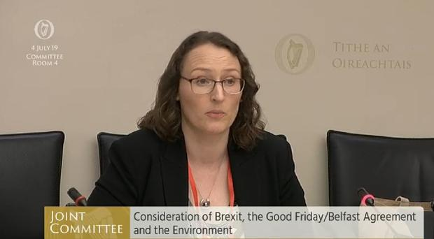 Alison Hough, a barrister and law lecturer based in Athlone Institute of Technology, appeared before the Good Friday Agreement committee (Oireachtas/PA)