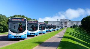 A fleet of Translink buses parked at Stormont