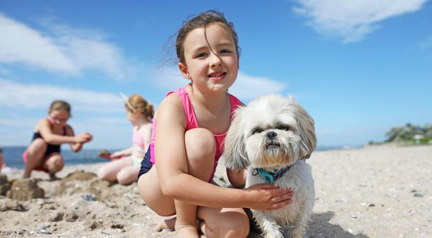 Chloe Denny with her dog Stevie enjoying the hot weather at Seapark