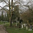 Co Antrim cemetery records company PlotBox has won a contract to gather information on graveyards held by Mid and East Antrim Borough Council. (stock photo)