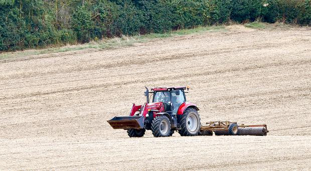 Northern Ireland needs a transformation of it's food and farming policy, a new report has found. (PA Archive)