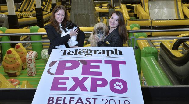 Belfast Telegraph Editor Gail Walker with Ollie the cat and Jessica Pimentel, duty manager at We Are Vertigo, with Rex the dog at the launch of the Belfast Telegraph Pet Expo