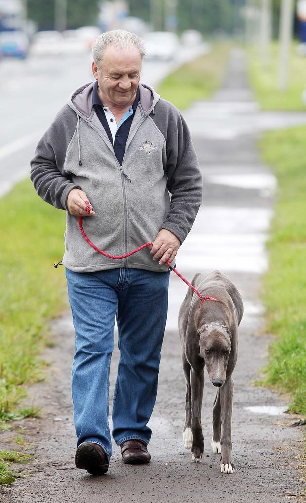 George Anderson from Mid Antrim Animal Sanctuary with Norman the greyhound who has died.