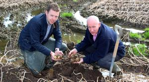 Wilson's Country agronomist Stuart Meredith (left) examines the potato crop with company managing director Lewis Cunningham