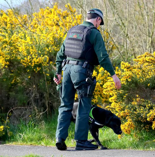 A PSNI sniffer dog at the scene after a resident found a suspected pipe bomb outside his home in the Teeling Avenue area of Lagmore yesterday