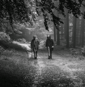 Mark Oliver's photograph of two members of his church walking group in Tollymore forest was the winner of our One Summer's Day competition
