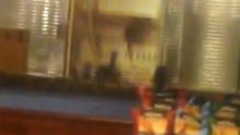 The rats are seen on the counter of Caffe Nero at Donegall Square West in Belfast city centre