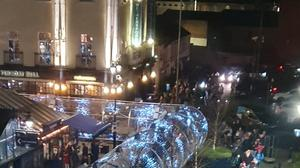 Large crowds queued to see the Christmas light show in Lisburn which has now been suspended over safety fears.