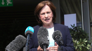 Draft stage: Diane Dodds confirmed the proposal was under serious consideration