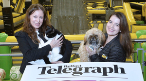 Belfast Telegraph Editor Gail Walker with Ollie the cat and Jessica Pimentel, duty manager at We Are Vertigo, with Rex the dog at the launch of Pet Expo