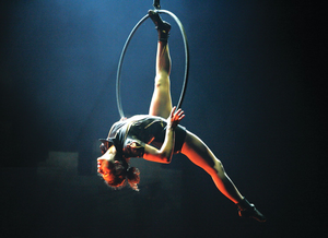 Just one of the acts to appear at Queen's Festival: Cirque Eloize