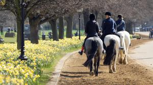 People riding horses in the warm weather in Hyde Park, London, as Britain could bask in the warmest weather of the year this weekend as temperatures soar to 19C (66.2F).