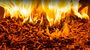 """The Ulster Farmers' Union (UFU) has said it is """"bewildered and frustrated"""" by a proposed tariff increase to the RHI scheme in Northern Ireland. (stock photo)"""