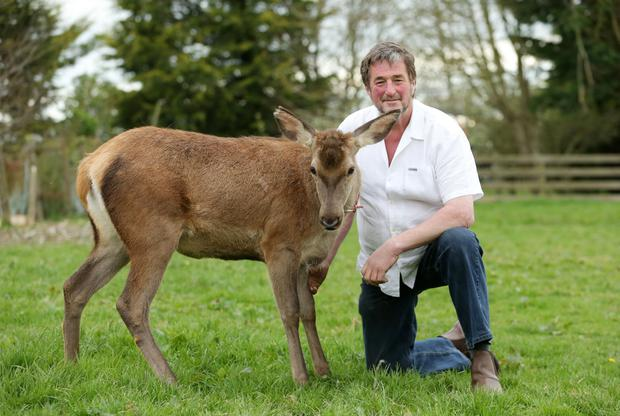 Kenny Gracey from Tandragee with Yanna the deer