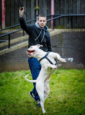 Andre Perrott with his dog Buster