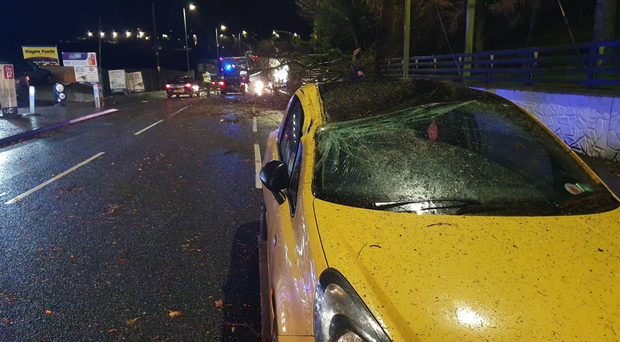 A car was hit by a falling tree near Cookstown