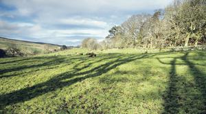 The Area of Natural Beauty in the Glens where plots are for sale