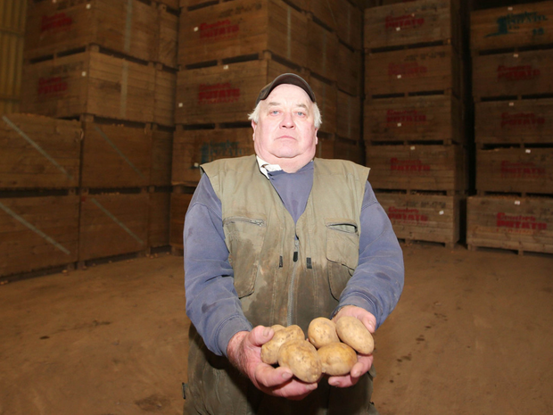 Potato farmer Robin McKee with his huge haul of potatoes on his farm in Comber