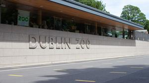 Dublin Zoo is set to open its doors again on Tuesday (Dublin Zoo/PA)