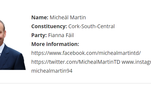 Micheal Martin's inclusion on the Women's Council of Ireland Manifesto website