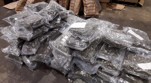 Gardai seized cannabis herb worth 3.2 million euro in Dundalk, Co Louth (Garda/PA)Photograph: The Garda Press Office /PA