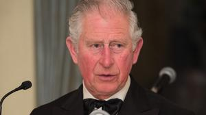 The Prince of Wales spoke of the friendship between Ireland and the UK (Jeff Spicer/PA)