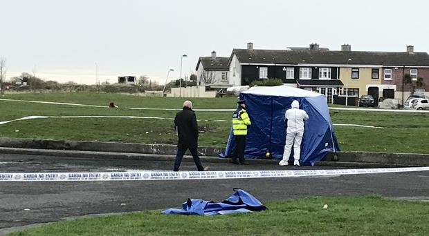 Gardai in Coolock, where human body parts where found in a bag (Cate McCurry/PA)