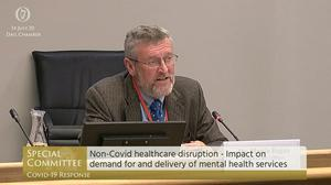 Martin Rogan, chief executive of Mental Health Ireland, was giving evidence to the Special Oireachtas Covid-19 committee (Screengrab/Oireachtas TV/PA)
