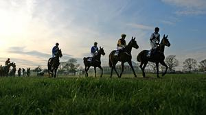 Naas will host the first fixture when racing resumes behind closed doors in Ireland on June 8, with the Irish 2,000 Guineas and 1,000 Guineas also set for the opening week.  (stock photo)