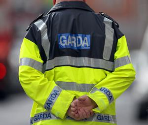 Gardai supported the search operation.