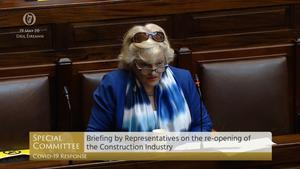 Screen grab of ICTU general secretary Patricia King appearing before the committee (Oireachtas TV/PA)