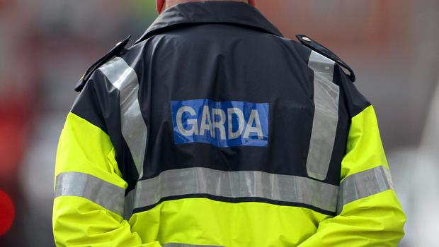Gardai said the 59-year old woman was out walking her dog in Millands at 7.30am on Monday morning when she was struck by a vehicle that did not stop (Niall Carson/PA)