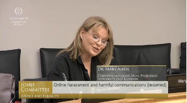 Cyberpsychologist Dr Mary Aiken said that Ireland has made little or no progress in dealing with online harassment.