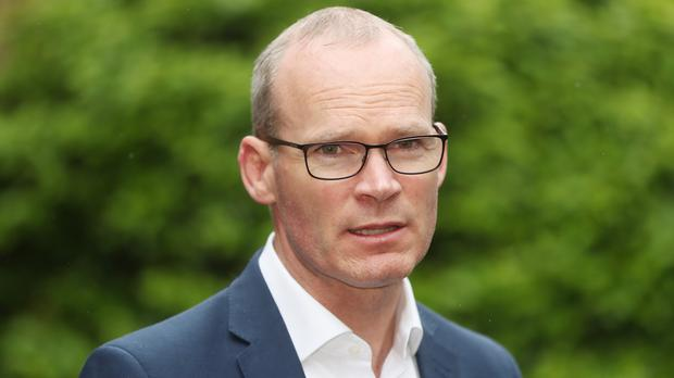 Tanaiste Simon Coveney told the Dail he hopes to introduce online safety legislation before the end of the year (Niall Carson/PA Wire)
