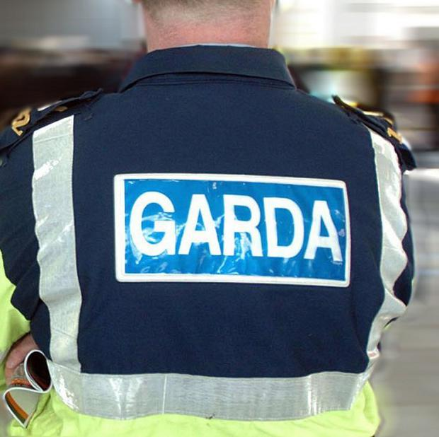 Gardai are investigating after a teenager died in an accident on a Cork farm