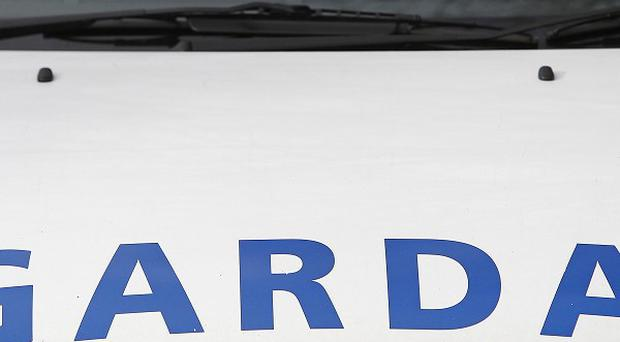 A young boy has been hurt in an alleged hit and run