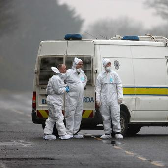 The scene where a man has been shot dead in Gormanstown, Co Meath