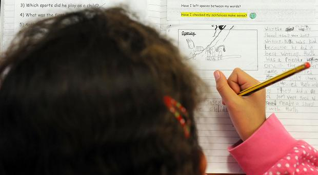 The National Council for Special Education called for schools to do more to accommodate special needs pupils
