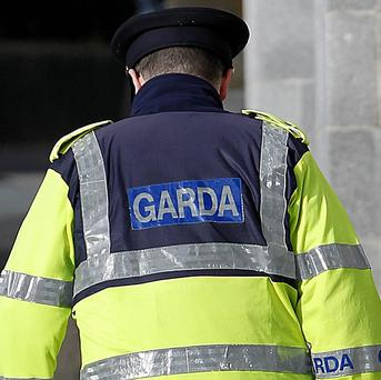 Two elderly brothers were beaten to death during botched burglary in Co Mayo