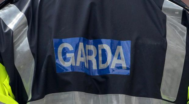 An investigation has been launched after armed robbers targeted a bookmaker's shop and a convenience store in north Dublin