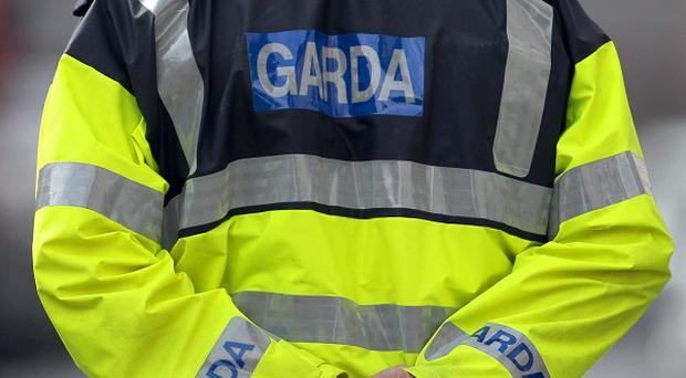Police in the Republic have issued a cross-border alert after two children and their father went missing