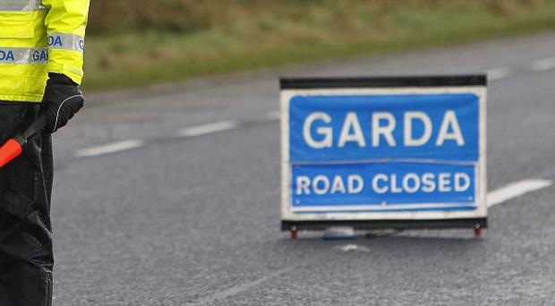 A controlled explosion has been carried out on a viable home-made bomb in Co Meath