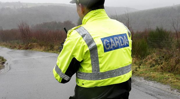 A toddler has drowned at a beach in Waterford, gardai said