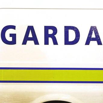 Gardai are hoping to find the family of a Polish man whose body was found at a waste disposal facility