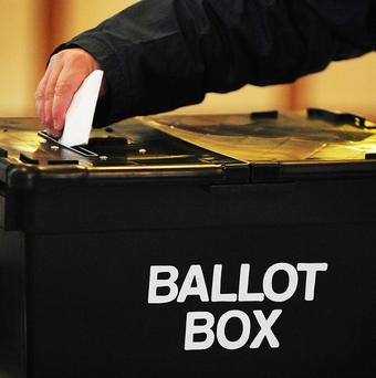 The Government has been given four months to decide whether to hold a referendum on overhauling its voting system